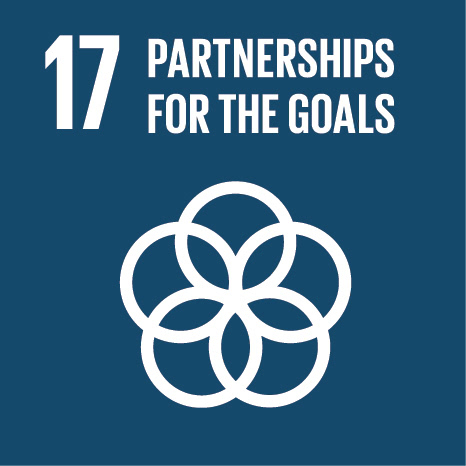 Sustainable development goal #17: Partnership for the Goals